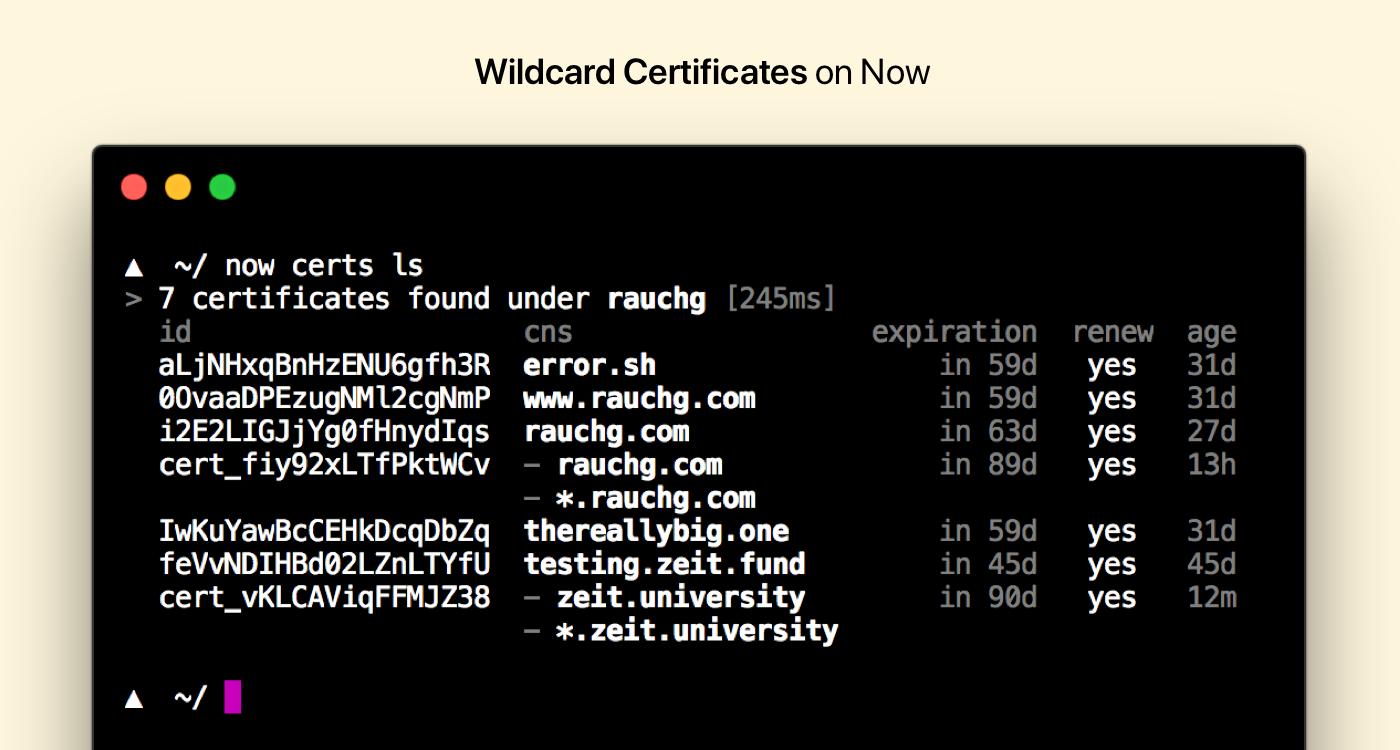 Zeit Wildcard Certificates On Now